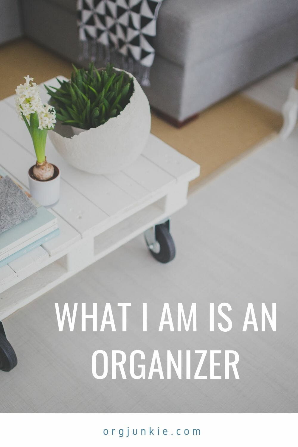 What I am is an Organizer at I'm an Organizing Junkie blog