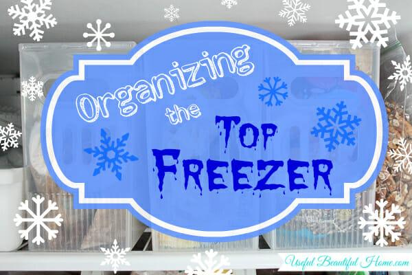 Organizing the Top Freezer at I'm an Organizing Junkie blog