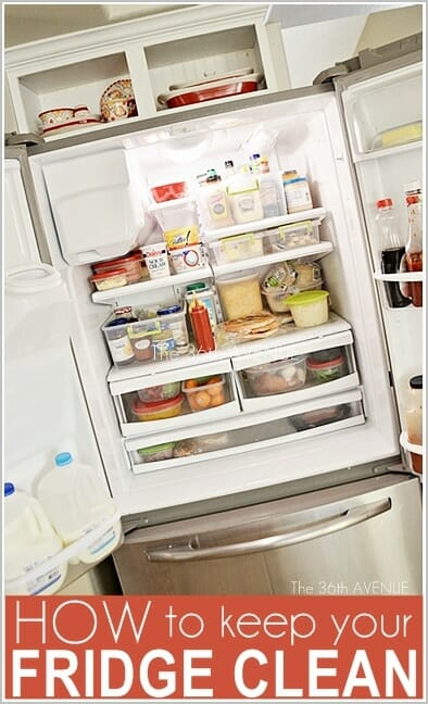 How to Keep Your Fridge Clean