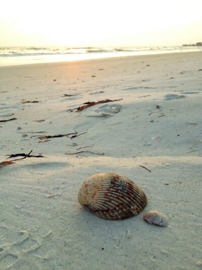Indian Rocks Beach, Florida 1