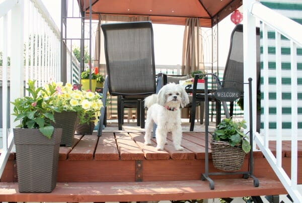How to Create a Private & Cozy Deck Oasis for Summer