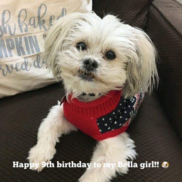 Cute Bella's 9th birthday