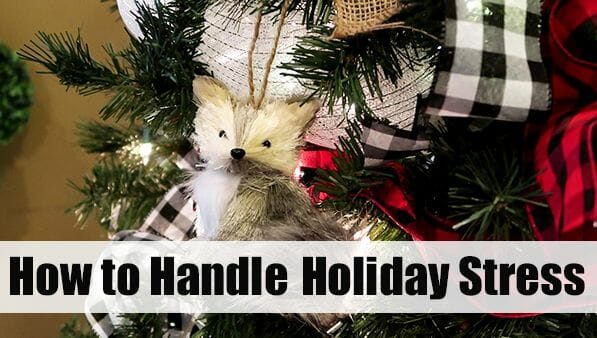 How to Handle Holiday Stress at I'm an Organizing Junkie blog