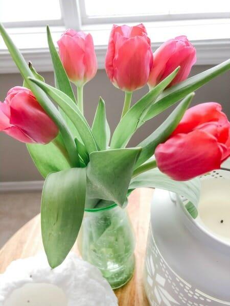 pretty tulips
