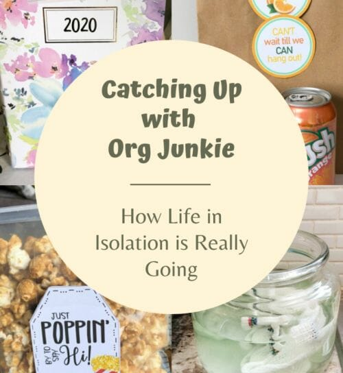 Catching up with Org Junkie #1