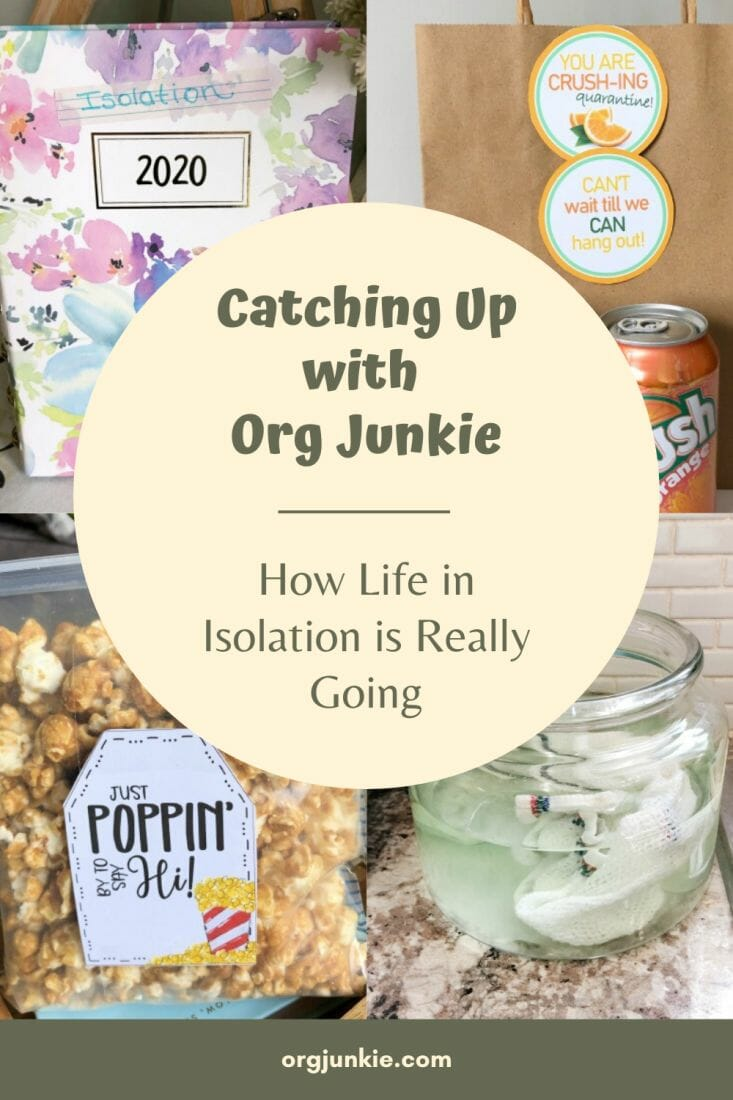 Catching Up with Org Junkie ~ How Life in Isolation is Really Going at I'm an Organizing Junkie blog