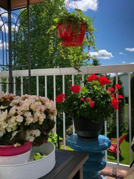 summer cozy deck