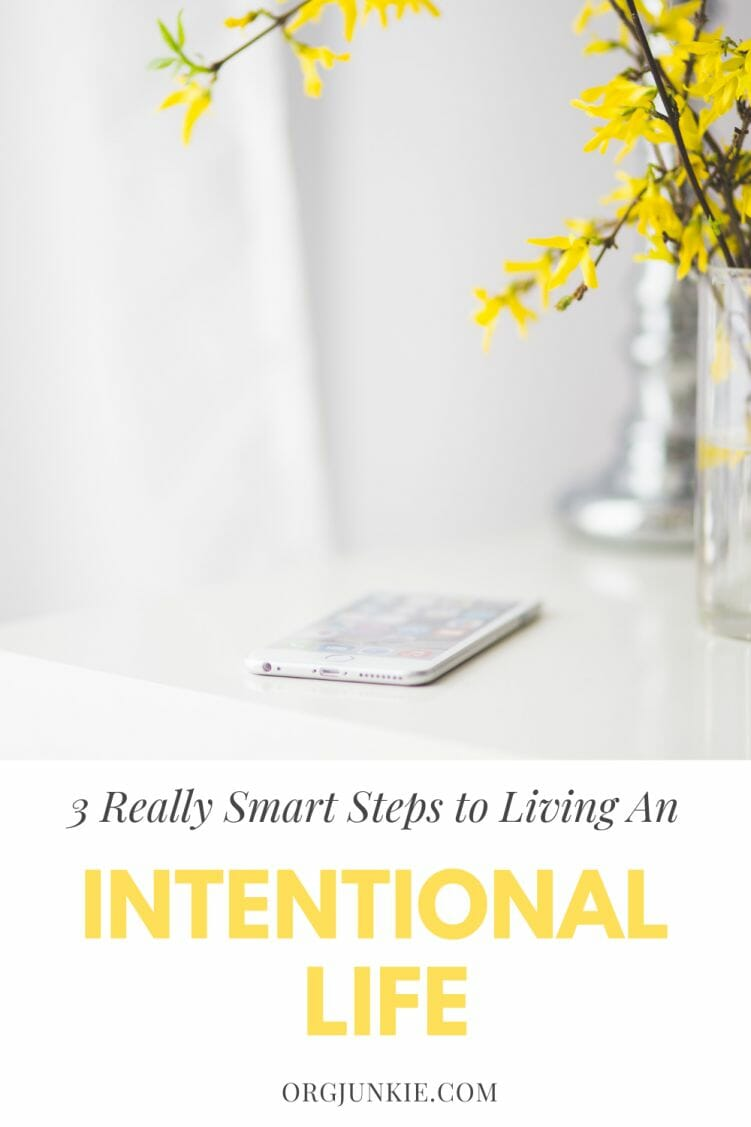 Three Really Smart Steps to Living an Intentional Life at I'm an Organizing Junkie blog