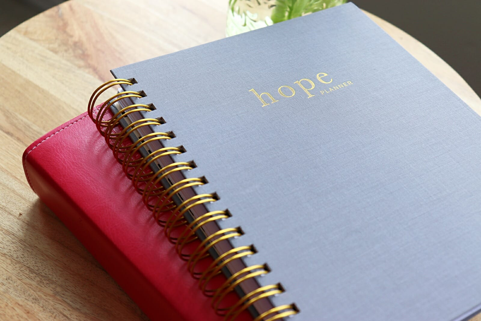 Hopefuel Planner