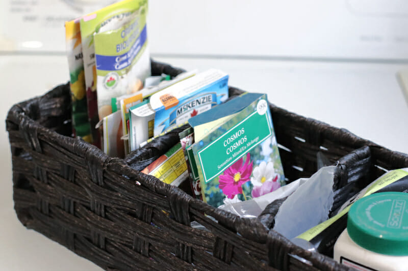 divided basket for seeds