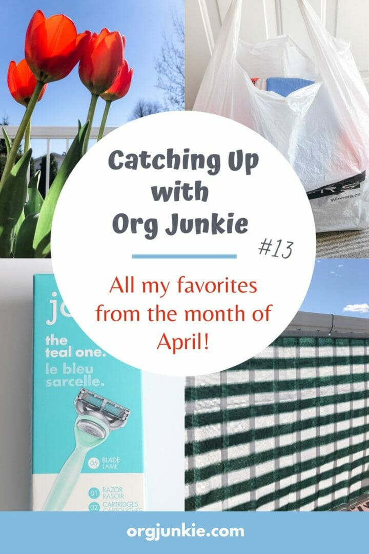 Catching Up with Org Junkie #13 ~ April 2021 Favorites: Privacy Screen, Joy Razers & Magazine Files at I'm an Organizing Junkie blog