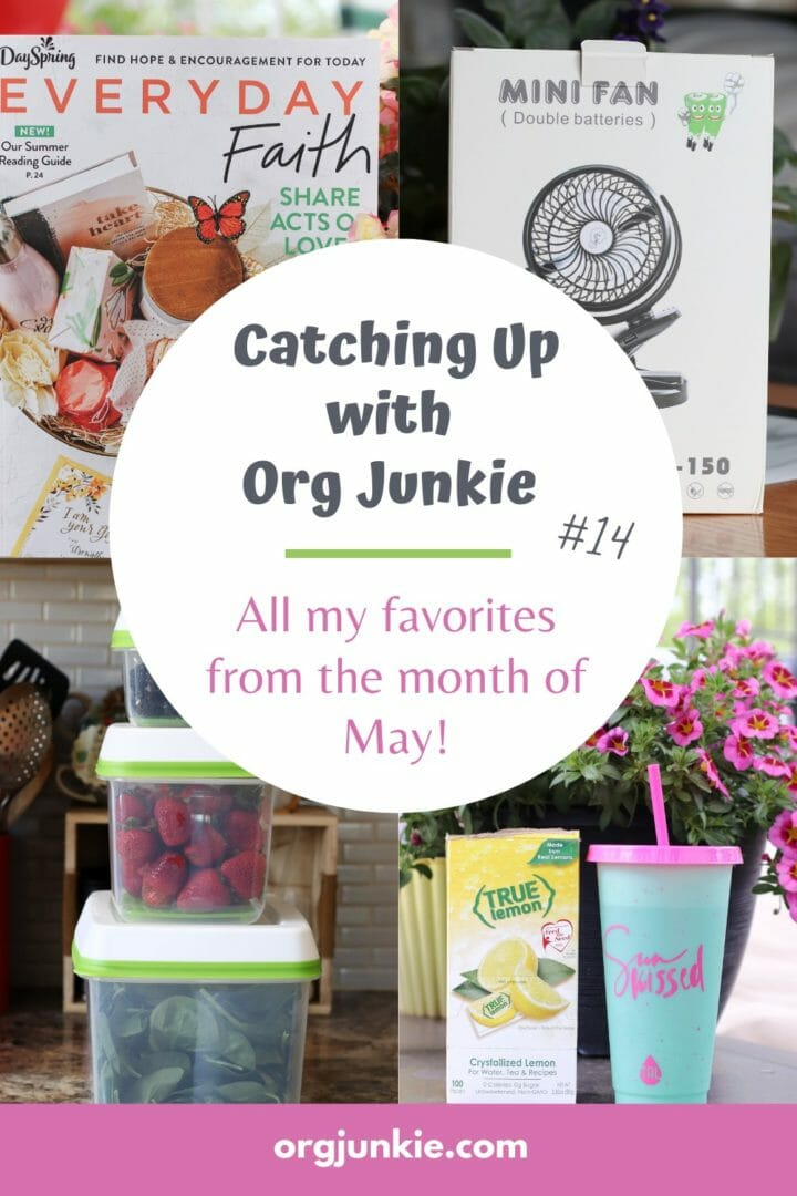 Catching Up With Org Junkie #14 ~ May 2021 Favorites: Rubbermaid, True Lemon & Everyday Faith at I'm an Organizing Junkie