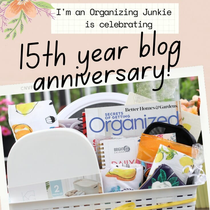 15th year blog anniversary