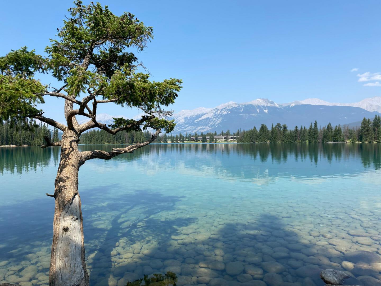 Beautiful Jasper Canada